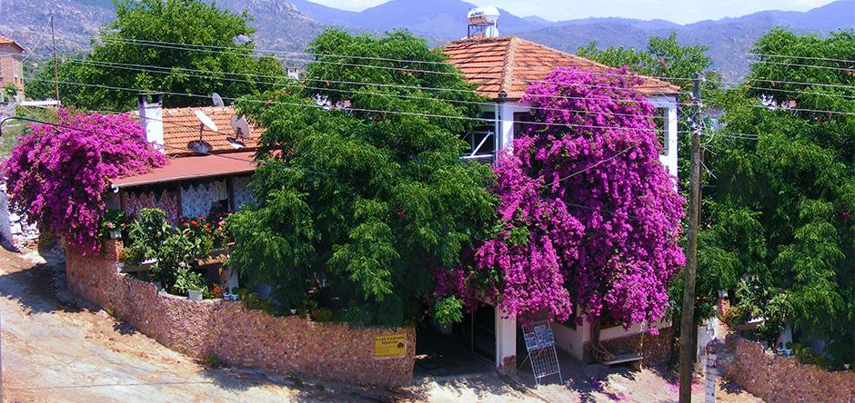 Haus Yasemin